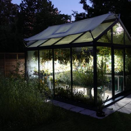 Greenhouse by night.