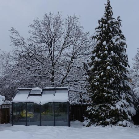 The greenhouse in winter.