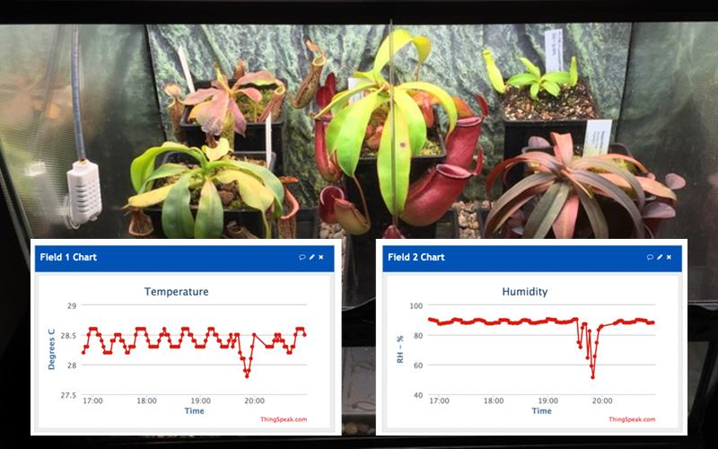 Anyone who's ever thought of building a carnivorous plant terrarium would do well to check out my new guide on intelligent automation...
