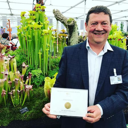 A 19th Chelsea Gold for Matt Soper and Hampshire Carnivorous Plants!