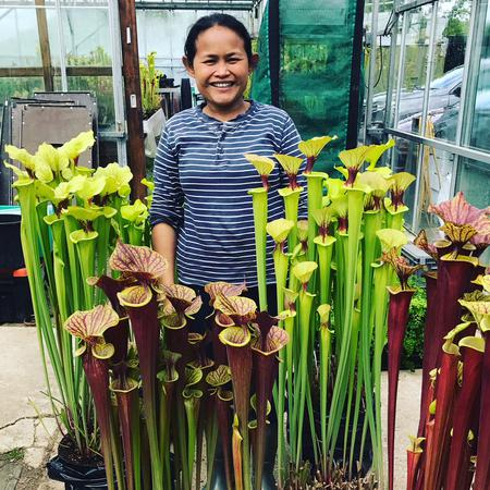 Fon with some of their stunning display plants.