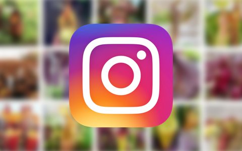 20 CP growers you should follow on Instagram