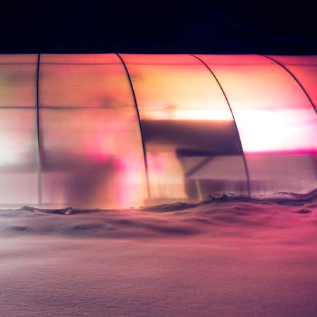 The Native Exotics greenhouse in snow.