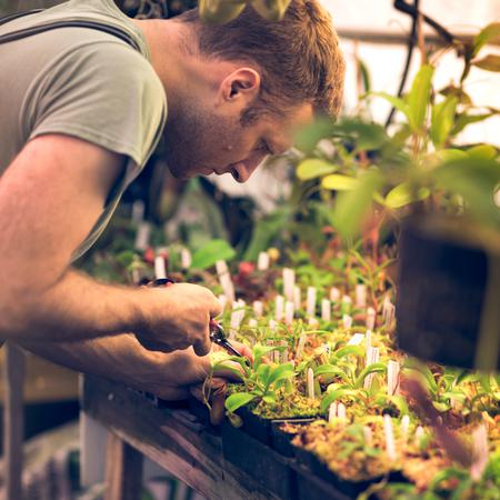 Ryan at work in the Native Exotics nursery.