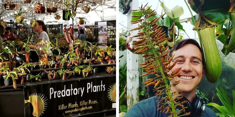 Left: Predatory Plants at the Pacific Orchid Expo in San Francisco in 2016. Right: Josh with a Nepenthes truncata.