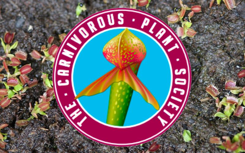 If you want to grow carnivorous plants from seed - and support a great cause while you're at it - then joining the CPS is one of the best things you can do.
